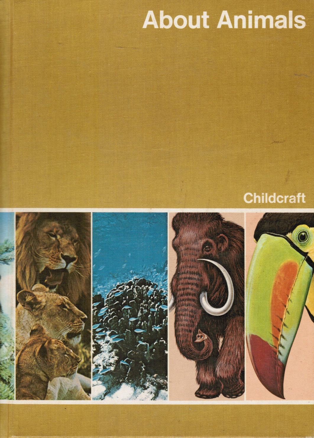 Image for Childcraft the How and why Library Volume 5: about Animals