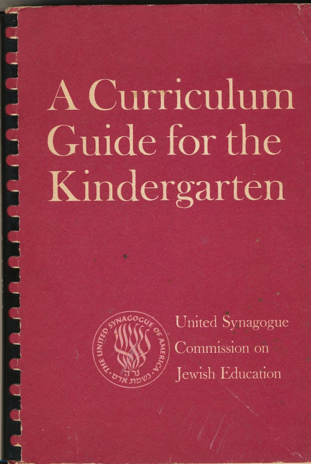 Image for A Curriculum Guide for the Kindergarten