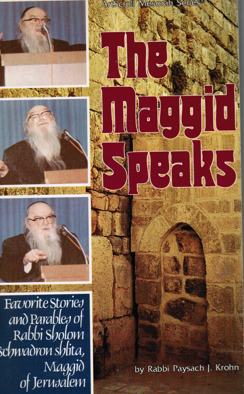 Maggid Speaks: Favorite Stories and Parables of Rabbi Sholom Schwadron