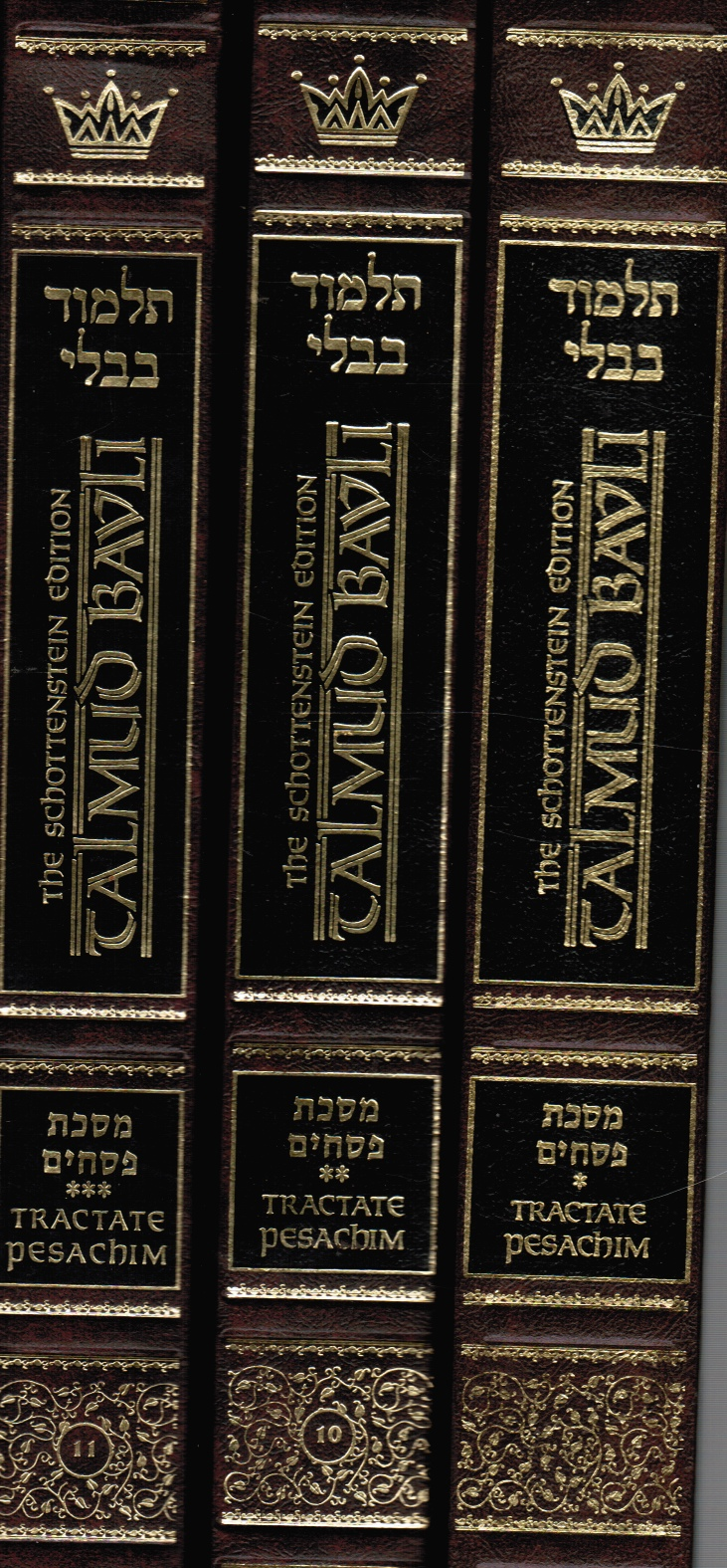 Talmud Bavli: the Gemara -- Tractate Pesachim (3 Books) Full-Sized Pesachim -- Vol 1, 2 and 3