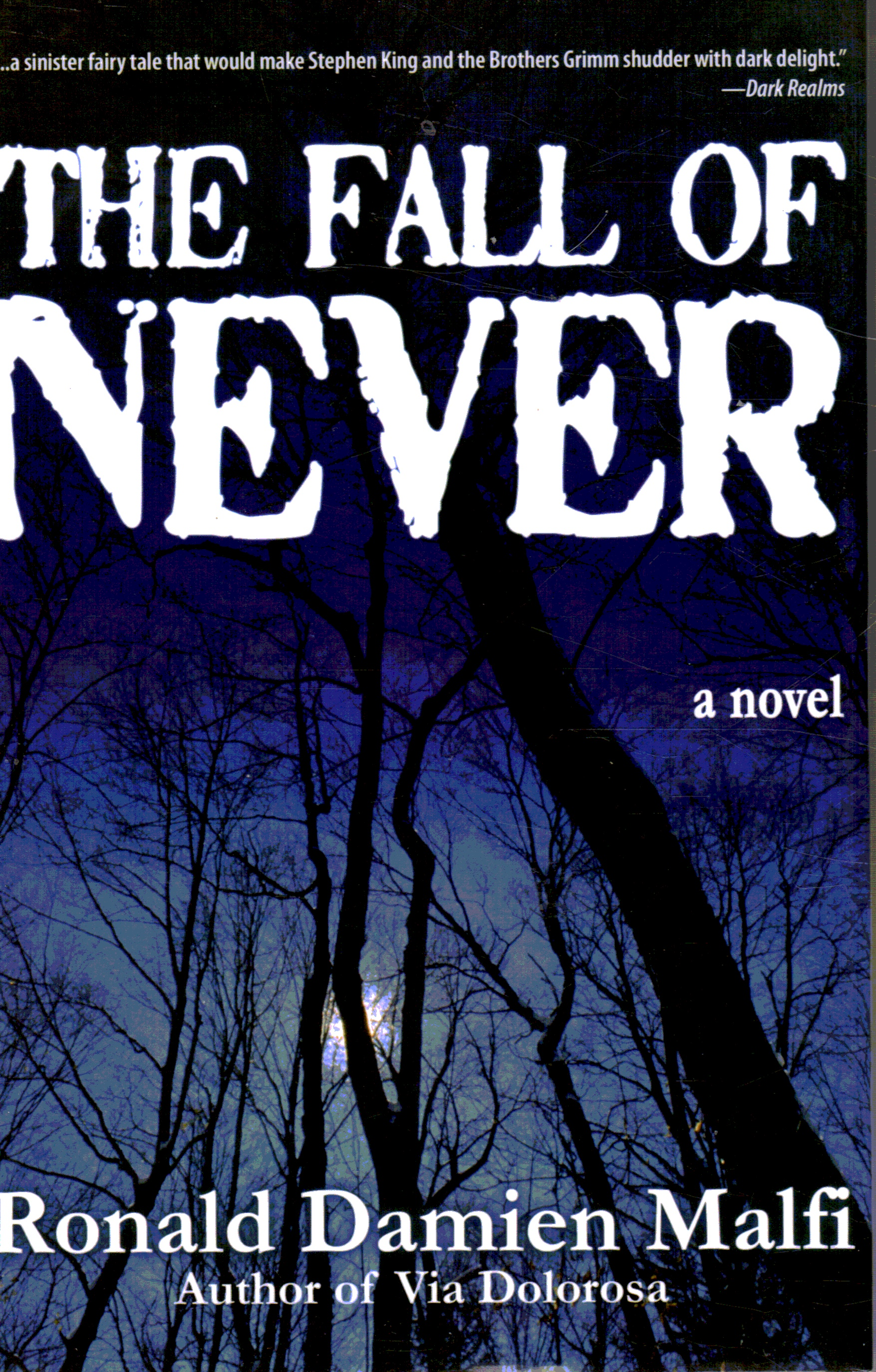 Image for The Fall of Never: a Novel