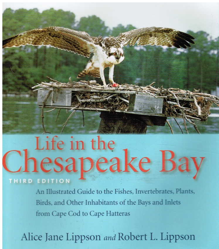 Image for Life in the Chesapeake Bay