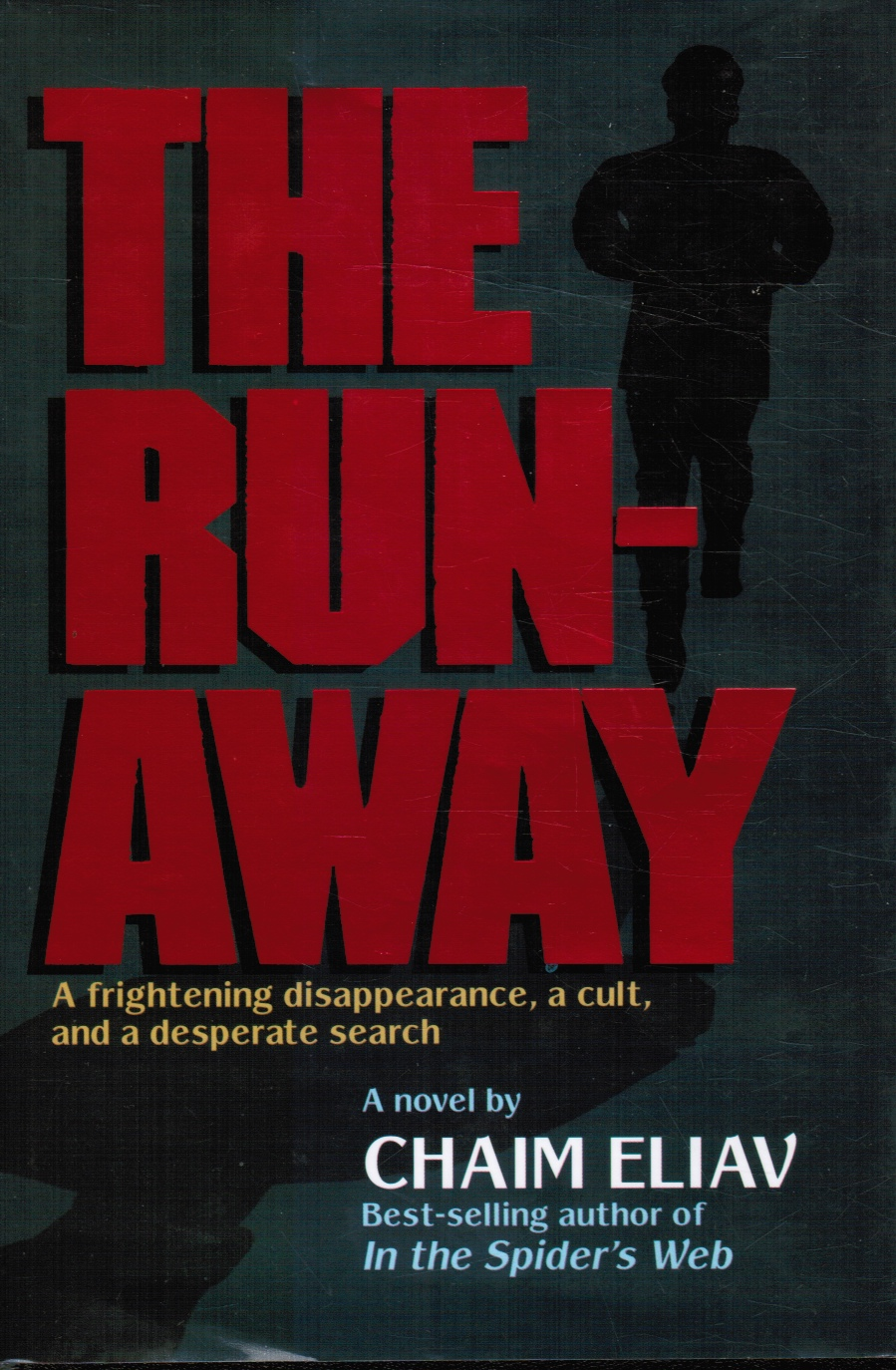 Image for The Runaway: A Frightening Disappearance, A Cult, And A Desperate Search
