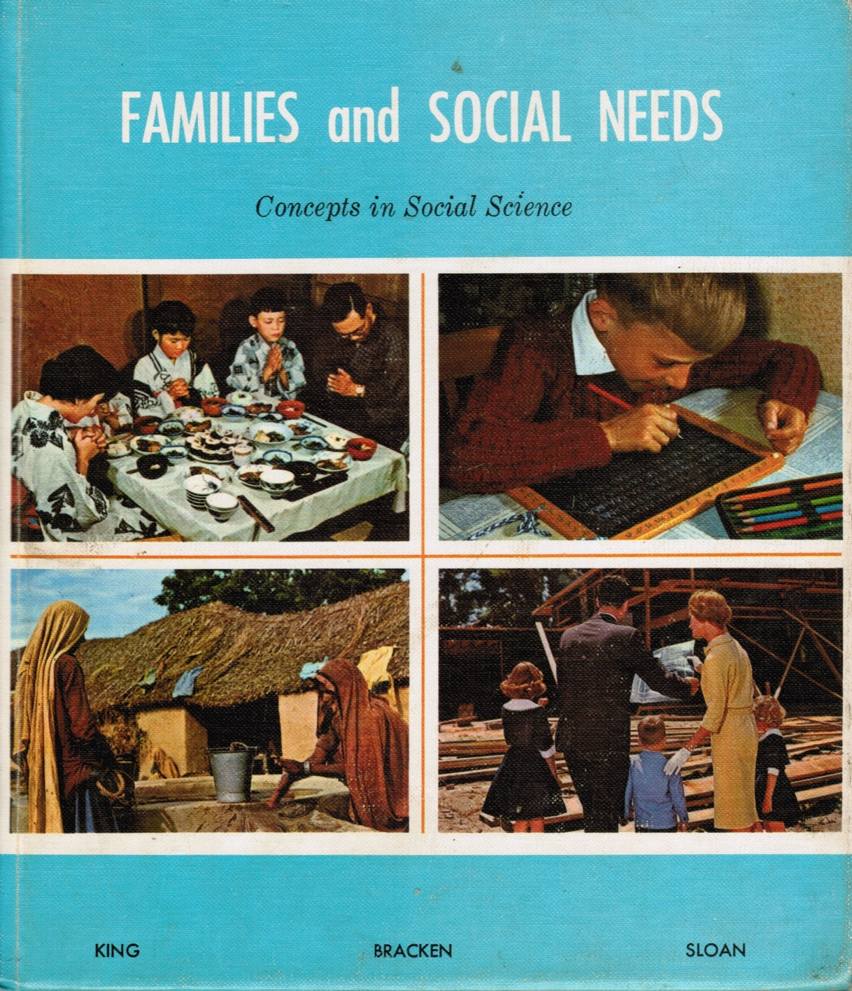 Image for Families and Social Needs: Concepts in Social Science